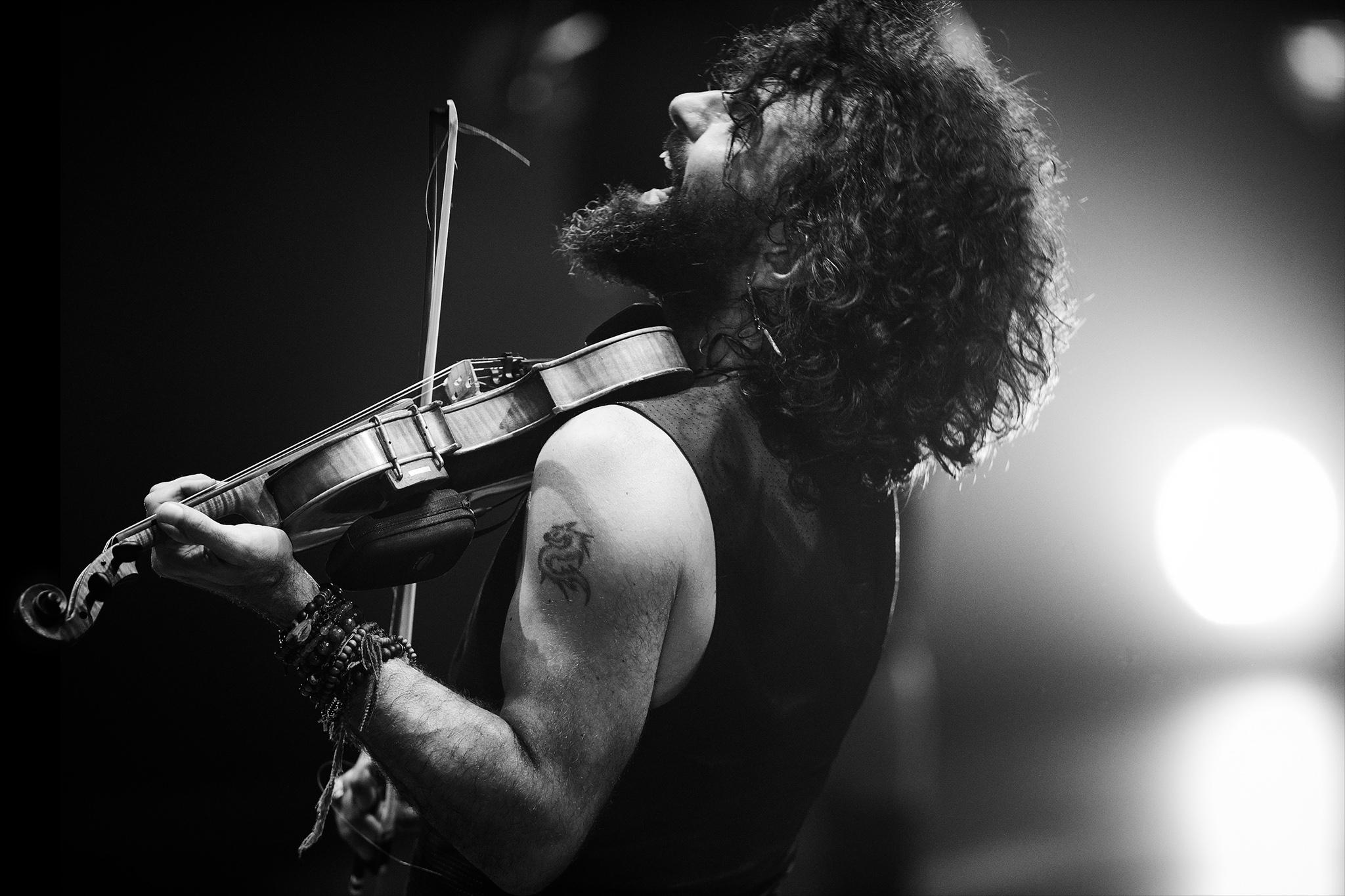 AraMalikian(live)